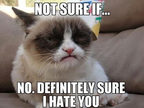 Grumpy Cat I Hate You Good Grumpy Cat Definitely Sure I