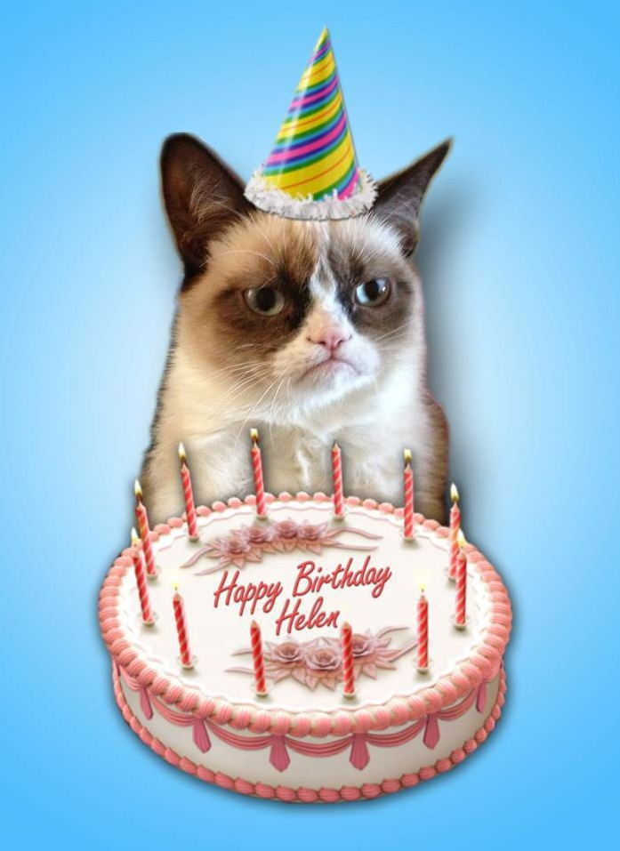 grumpy cat birthday card  funny  faxo