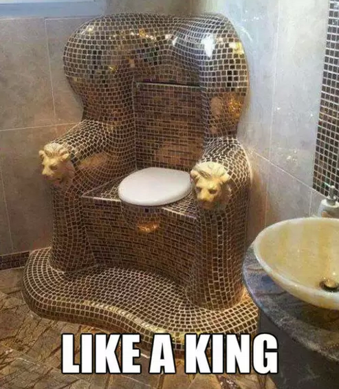 Worlds Most Expensive Toilet Funny Faxo