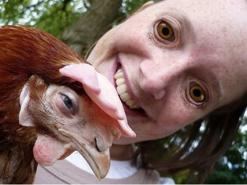 Popular Scary Chicken Meme: Those Eyes Though... Chicken Eyes